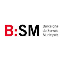 logo_bsm